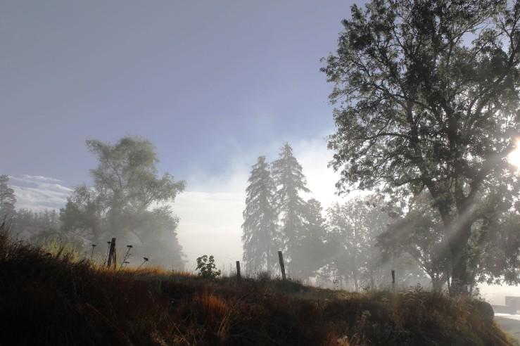 Mist one morning over Verne, Auvergne, France | Infinite belly