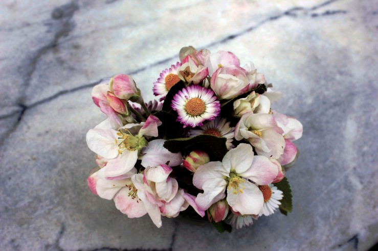 Apple-tree flower bouquet | Infinite belly