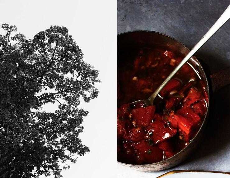 Provençal sauce vierge | Infinite belly