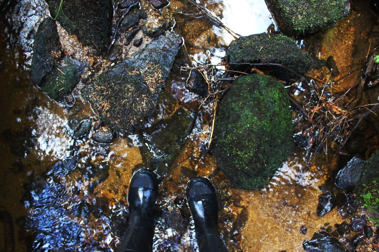 Rubber boots in a stream | Infinite belly