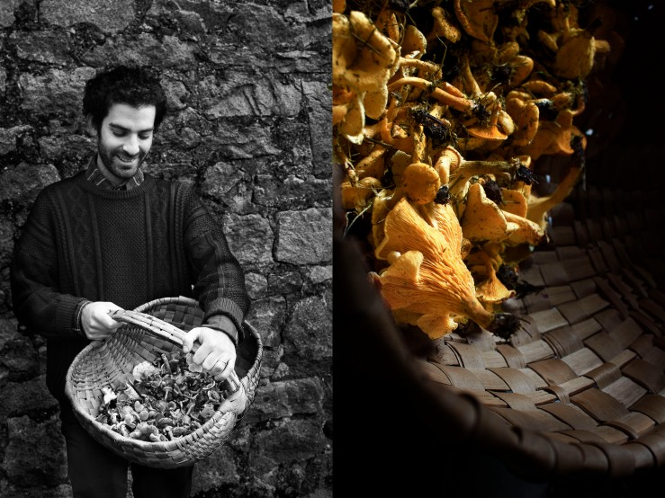 Girolles mushroom basket - Infinite belly