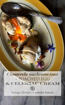 Chanterelle toast, poeached egg & celeriac cream | Infinite belly