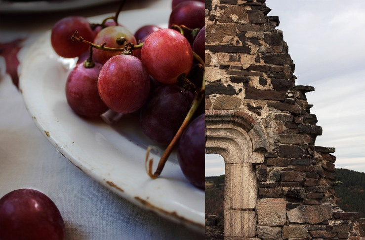 Fresh grapes & Artias castle ruins, Auvergne, France | Infinite belly