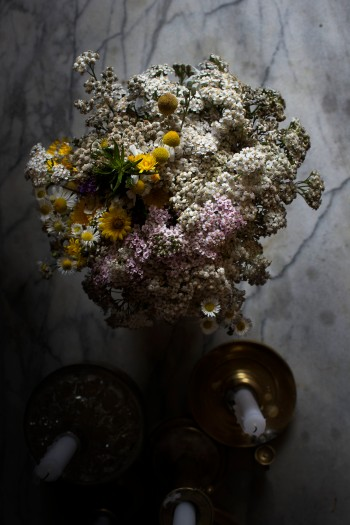 Wild flowers | Infinite belly