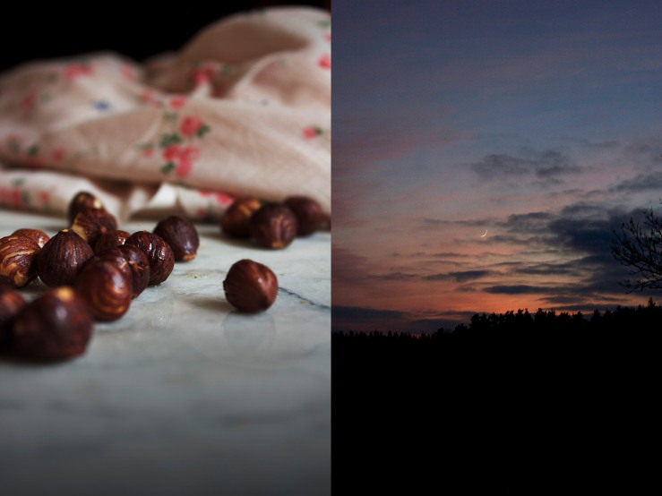 Hazelnuts & sky at dusk | Infinite belly