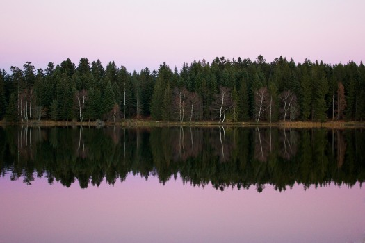 Lake reflections | Infinite belly
