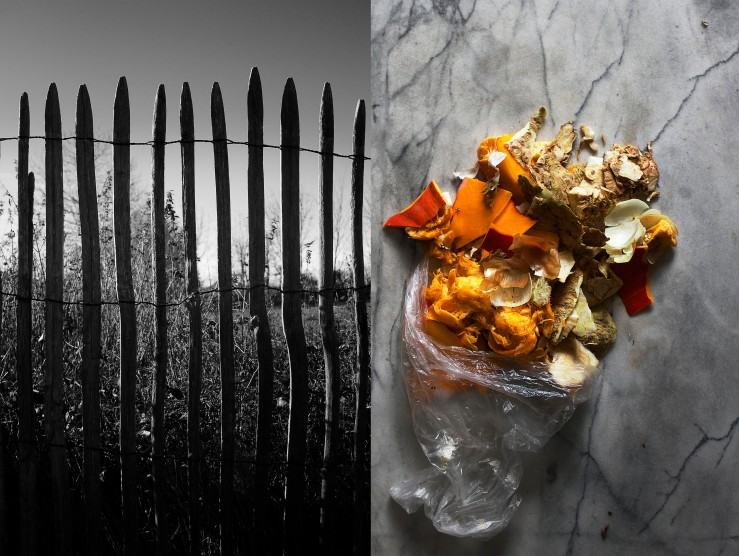 Old fence & peelings bouquet | Infinite belly