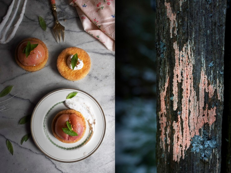 Poached peach & verbena tartlets 4 | Infinite belly
